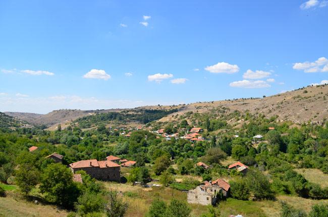 Village of Gradeshnica